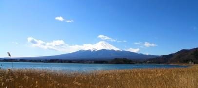 เที่ยวญี่ปุ่น ซากุระ (1) วางแผนเที่ยวญี่ปุ่น