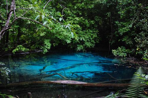 กระบี่ 7 วันที่ฝันไป ตอนที่7 ท่าปอมคลองสองน้ำ สุสานหอย วัดถ้ำเสือ น้ำตกร้อน สระมรกต สระน้ำผุด