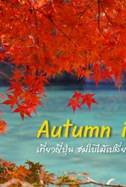 เที่ยวญี่ปุ่น ใบไม้เปลี่ยนสี (1) วางแผนเที่ยว