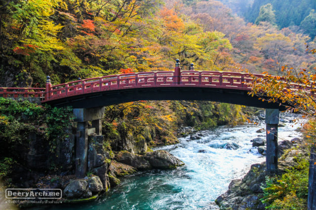 เที่ยวญี่ปุ่น ใบไม้เปลี่ยนสี (15) Nikko World Heritage